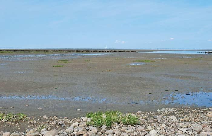 Wattenmeer auf der Insel Mando