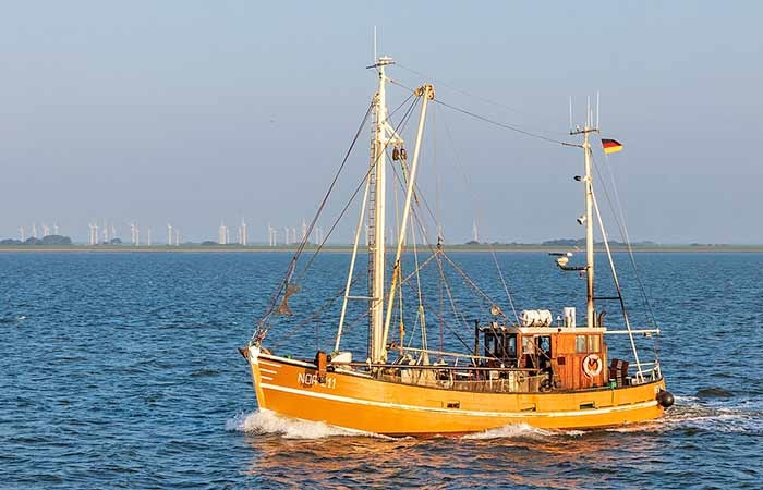 Fischkutter im Nationalpark Niedersächsisches Wattenmeer bei Norddeich