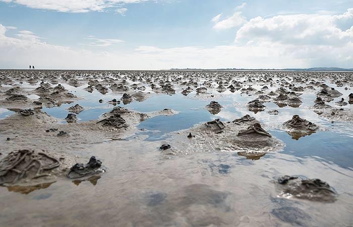 """""""Haufen"""" des Wattwurms im Wattenmeer auf Sylt"""